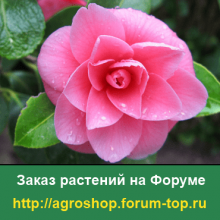 Заказ редких растений